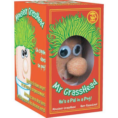 Mrgrasshead