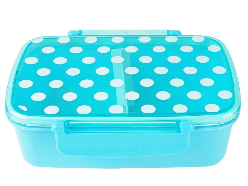 Lunchboxbleue