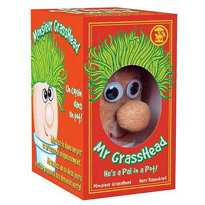 Mr-grasshead