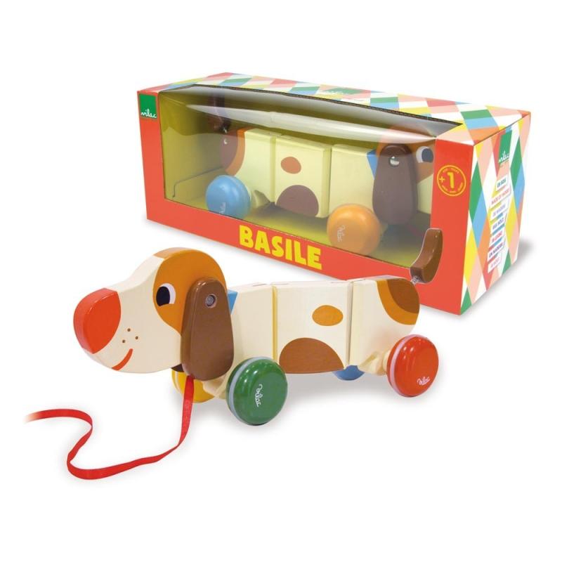 Basile-le-chien-boîte