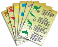 Enquete-animaux-cartes