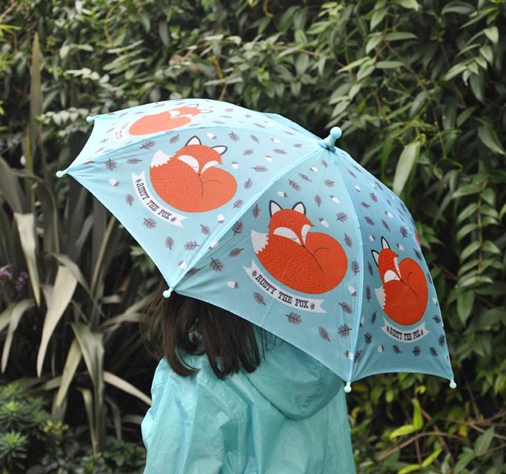 Renard parapluie
